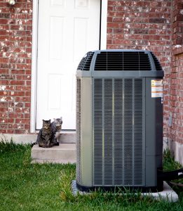 outdoor-air-conditioning-unit-with-cat